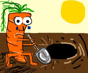 Carrot sadly digs a hole