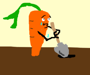 Crying carrot digs a hole.