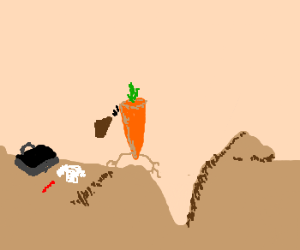 carrot is going back to its roots