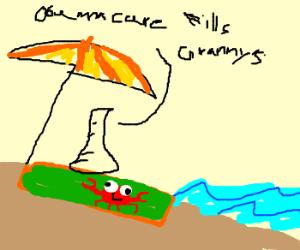 Beaker lies on beach towel with weird crab pic