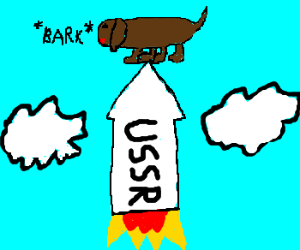 RUSSIA LAUNCHES FIRST DOG INTO LOW ORBIT
