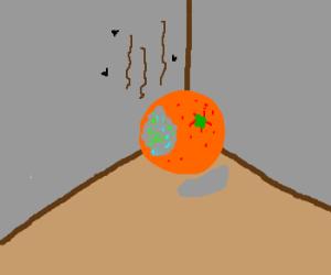 Put that orange in the corner it's all moldy!