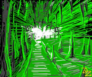 Beeping cave filled w/ stalagmites/stalactites
