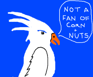 Why won't my parakeet eat my diarrhea?