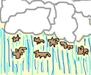 It's raining miniature cats and dogs.
