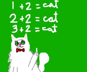 Professor Cat teaches arithmetic
