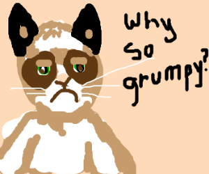 Grumpy Cat is publicly asked why he's grumpy.