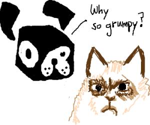 Fido wonders why Tard is so Grumpy