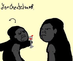 Gorilla soap opera.