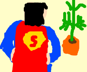 superman growing weed
