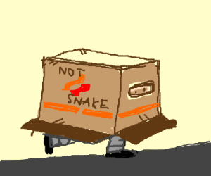 Man hides in a box....But its NOT a snake box!