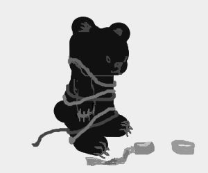 Bear entangled in electrical tape.