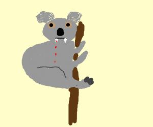 Cuddly koala teddy bear is scary