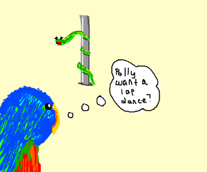 Parrot watches snake pole dance. Is confused.