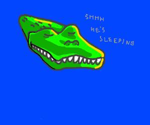 crocodile taking nap in the water