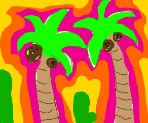 palm trees on acid