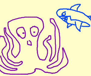 Octopus attacked by shark