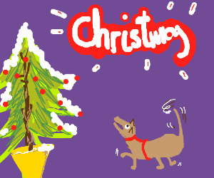 Dog is excited about the word Christmas