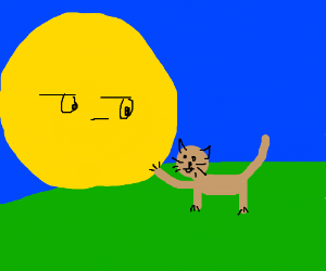 Large Sun is disturbed by Cat.