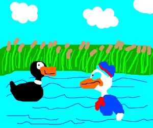 Donald and Daffy swimming in a pond