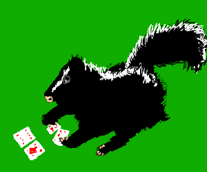 skunk is playing cards