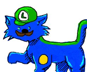 Luigi cat