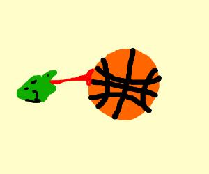 A frog eats a basketball