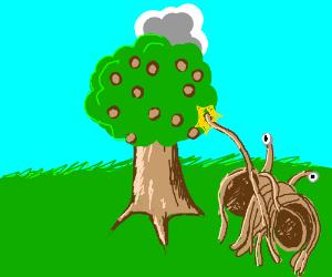 Mystical spaghetti and meatball tree.