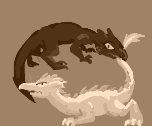 Yin and Yang Dragons trying to eat their tails