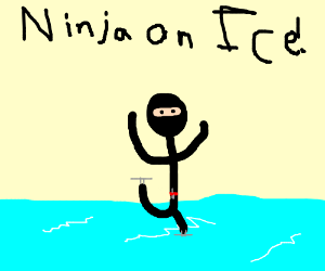 Wednesday at the Theater: Ninjas on Ice!