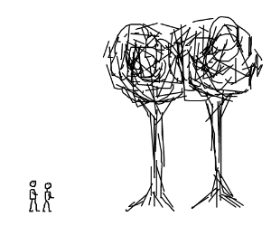 Two men staring at two rather large trees