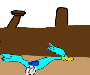 Road runner after slowpoke