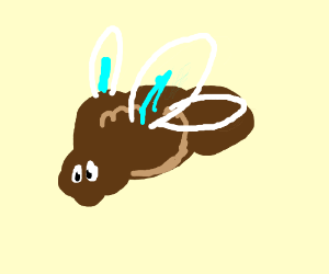 brown thing with wings