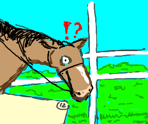 Horse surprised to see panel 12 at the races