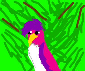 Flamboyant purple and pink bird