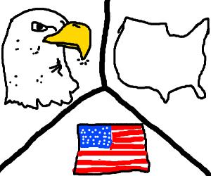 comparison of eagle beak, US, and US flag