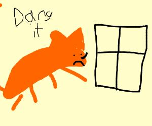 Firefox encounters Windows