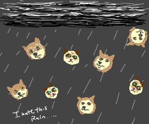 It's raining Grumpycats and Doges