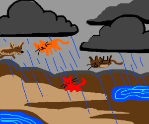 it be rainin' cats n' dogs, yo