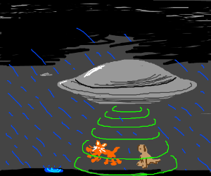 Cats & Dogs being abducted by UFOs in the rain