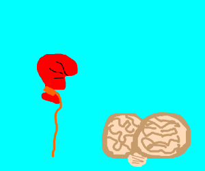Half inflated balloon next to a dead brain