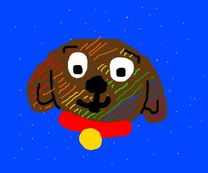 Rainbow Puppie
