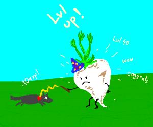 White beet reaches level 40