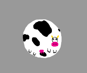 Circle Cow