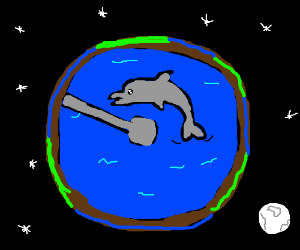 Dolphins make the world go round :)