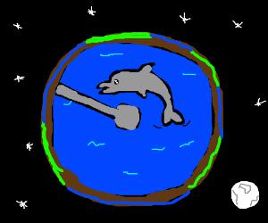 Dolphins make the world go round :)