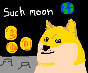 Doge goes to the moon with DogeCoins