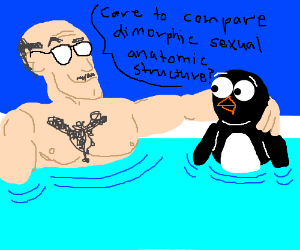 Hot tub scene: A science teacher and a penguin