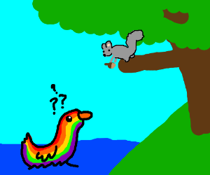 Rainbow duck wonders about squirrel in a tree