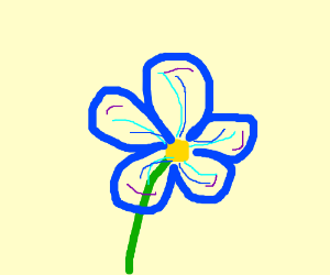A very detailed flower